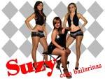 Cantora Suzy - Artista de Musica Popular